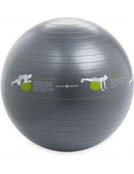 Gaiam Stability Ball